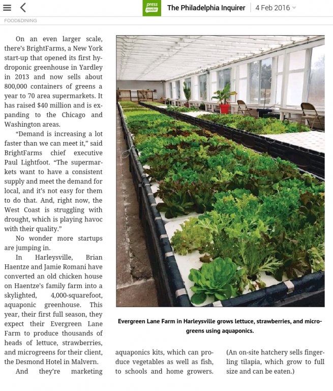 aquaponics-article.png